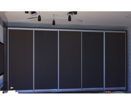 Шкаф-купе  5-ти дверный ОН 486-220